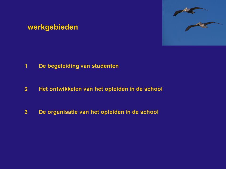 werkgebieden 3 2 1 De begeleiding van studenten