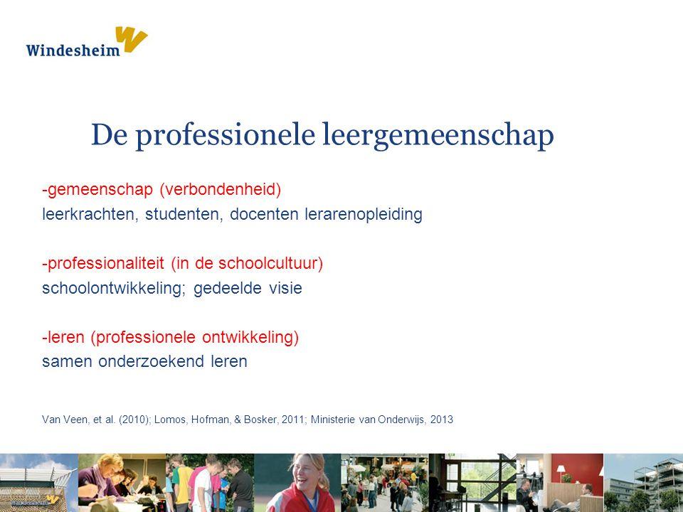 De professionele leergemeenschap
