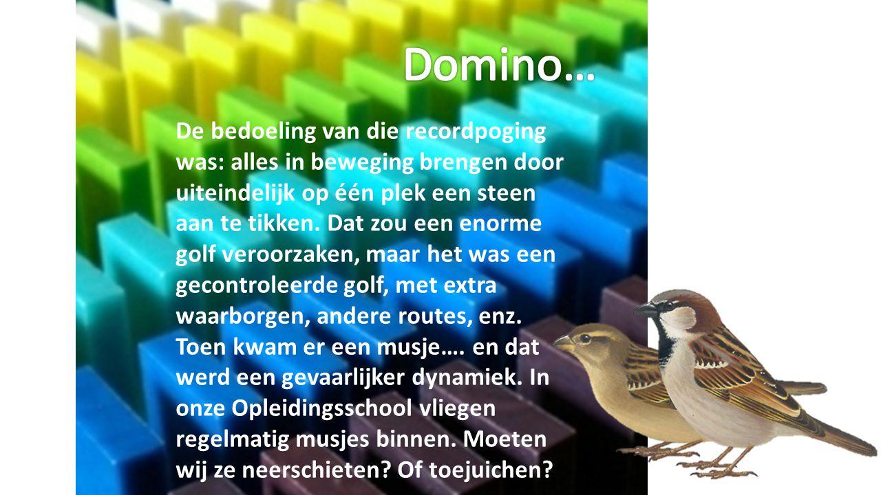 Domino…