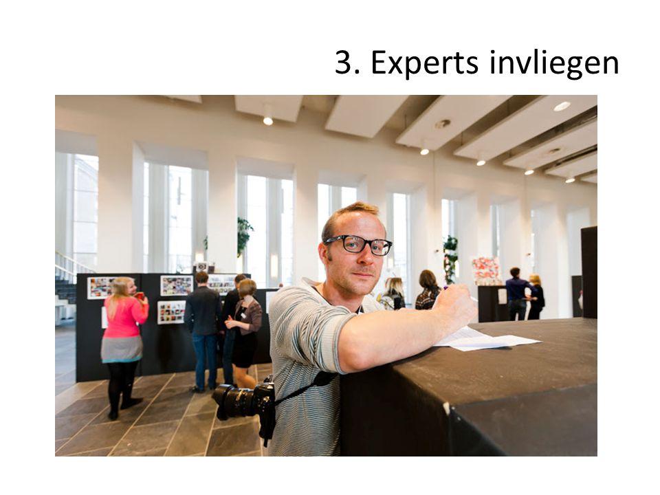3. Experts invliegen