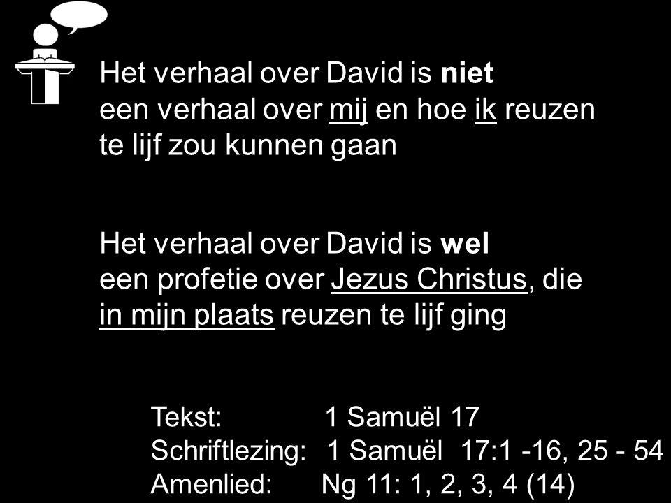 Het verhaal over David is niet een verhaal over mij en hoe ik reuzen
