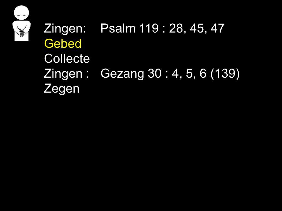 Zingen: Psalm 119 : 28, 45, 47 Gebed Collecte Zingen : Gezang 30 : 4, 5, 6 (139) Zegen