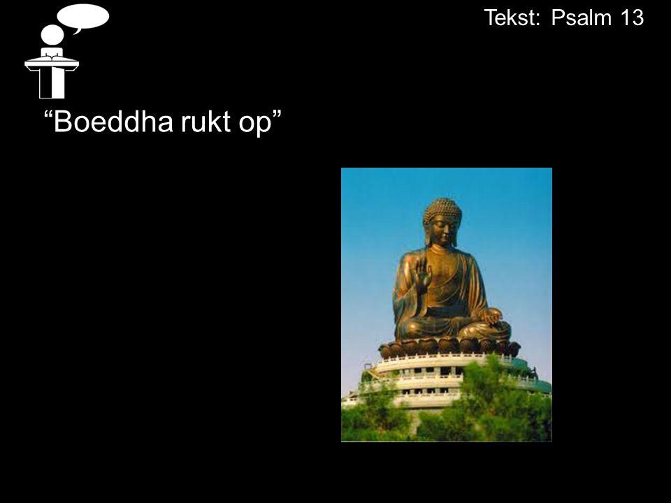 Tekst: Psalm 13 Boeddha rukt op