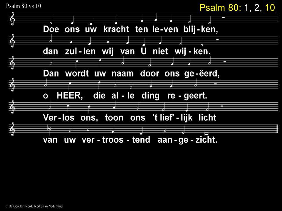 Psalm 80: 1, 2, 10