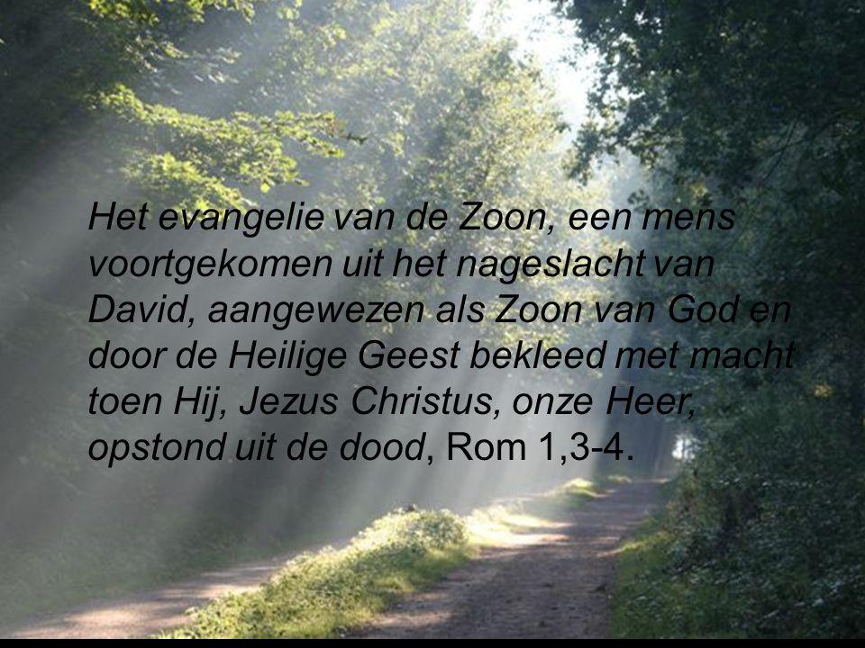 Het evangelie van de Zoon, een mens voortgekomen uit het nageslacht van David, aangewezen als Zoon van God en door de Heilige Geest bekleed met macht toen Hij, Jezus Christus, onze Heer, opstond uit de dood, Rom 1,3-4.