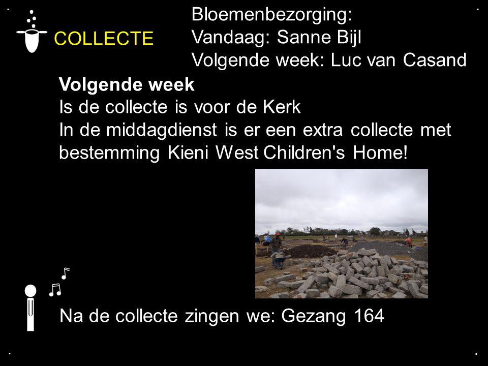 COLLECTE Bloemenbezorging: Vandaag: Sanne Bijl