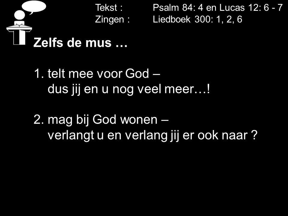 dus jij en u nog veel meer…! 2. mag bij God wonen –