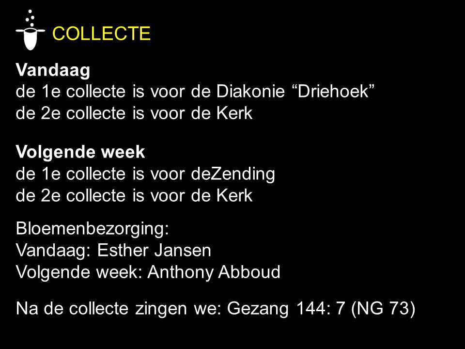 COLLECTE Vandaag de 1e collecte is voor de Diakonie Driehoek