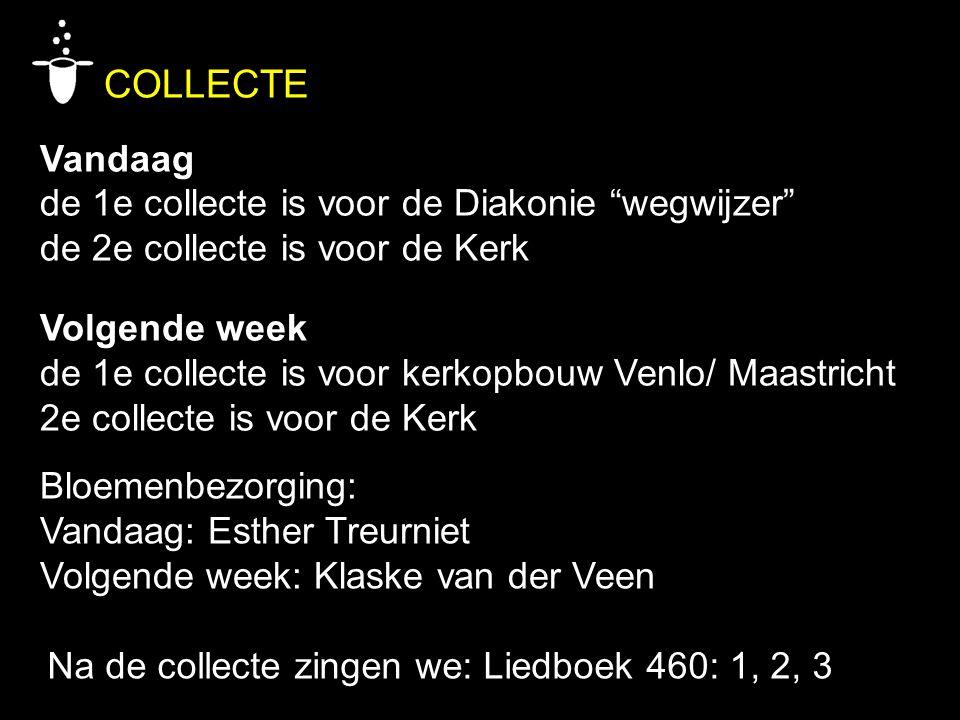 COLLECTE Vandaag de 1e collecte is voor de Diakonie wegwijzer