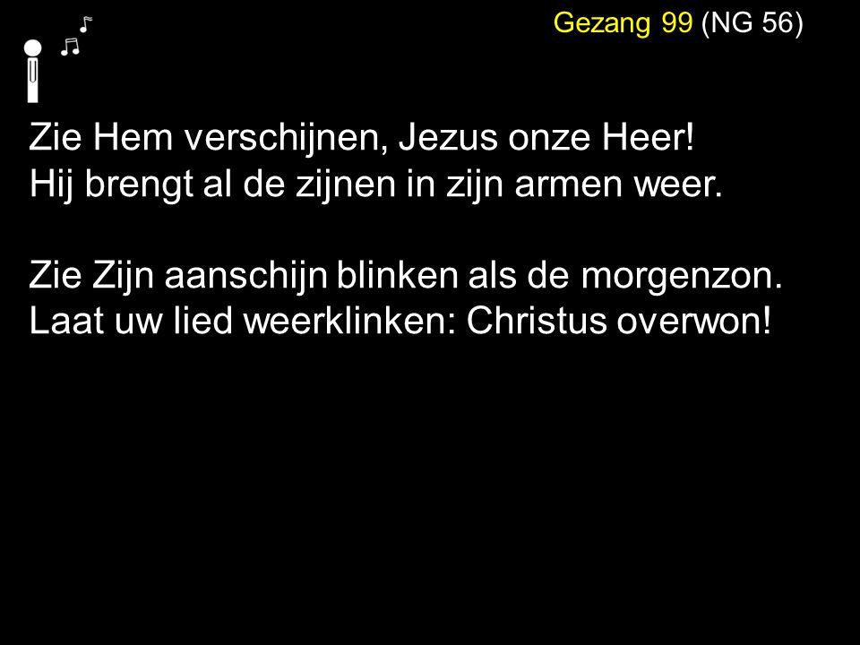 Zie Hem verschijnen, Jezus onze Heer!