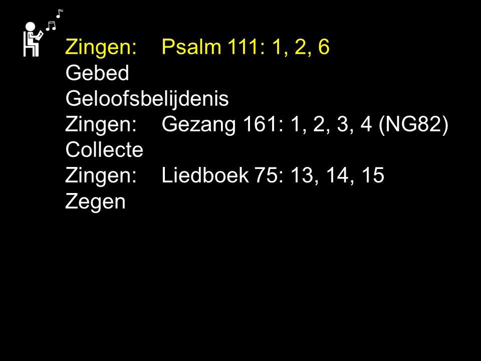 Zingen: Psalm 111: 1, 2, 6 Gebed. Geloofsbelijdenis. Zingen: Gezang 161: 1, 2, 3, 4 (NG82) Collecte.