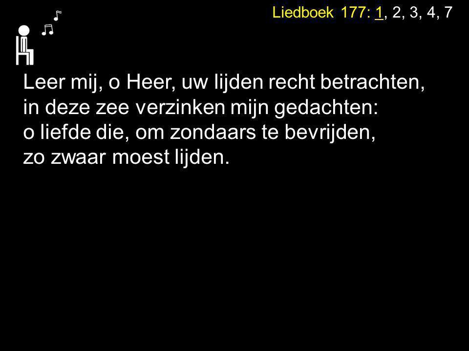 Leer mij, o Heer, uw lijden recht betrachten,