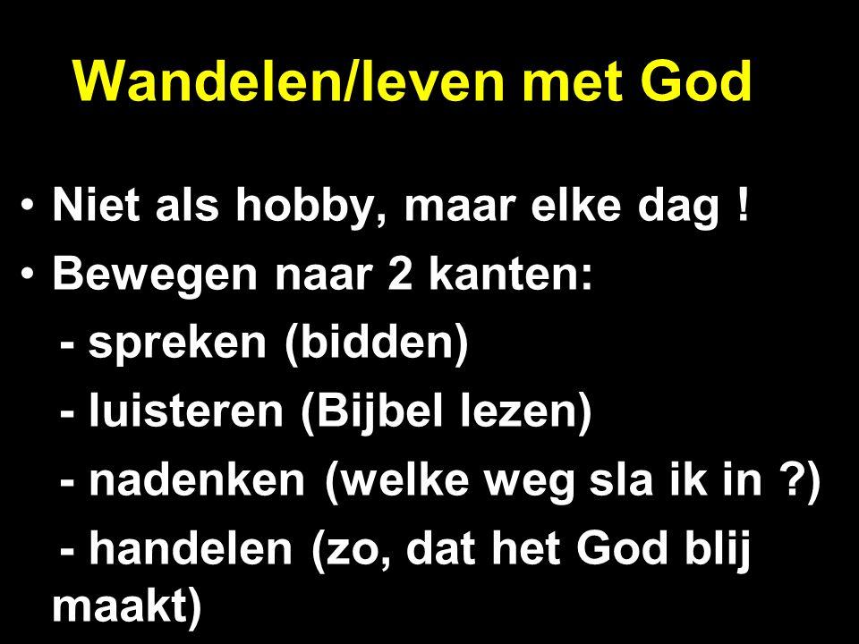 Wandelen/leven met God