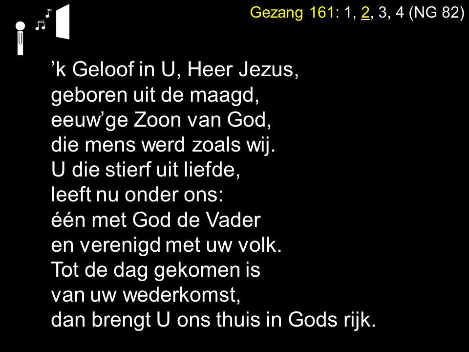 'k Geloof in U, Heer Jezus, geboren uit de maagd,