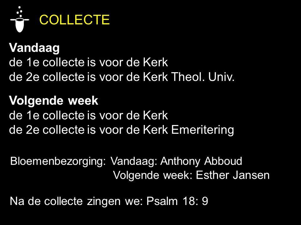 COLLECTE Vandaag Volgende week de 1e collecte is voor de Kerk