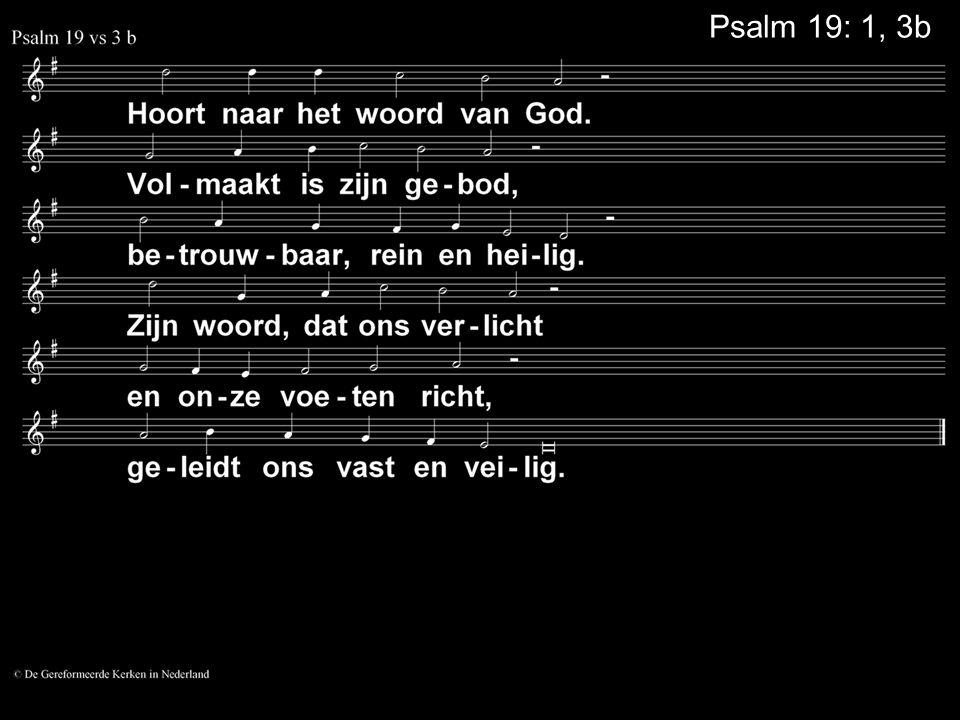 Psalm 19: 1, 3b