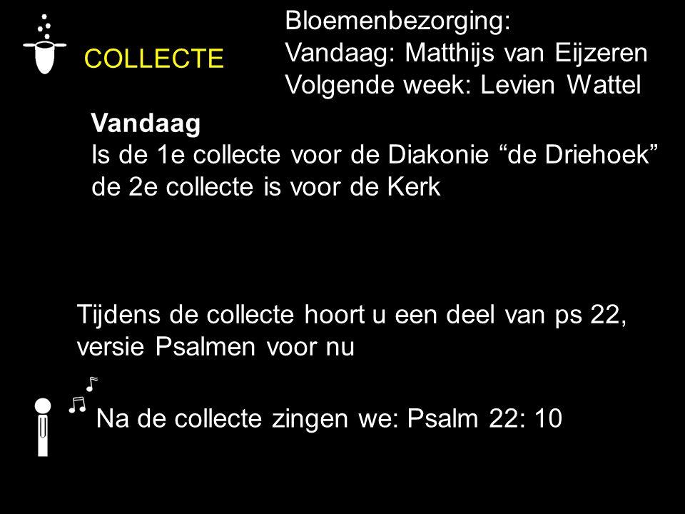 COLLECTE Bloemenbezorging: Vandaag: Matthijs van Eijzeren