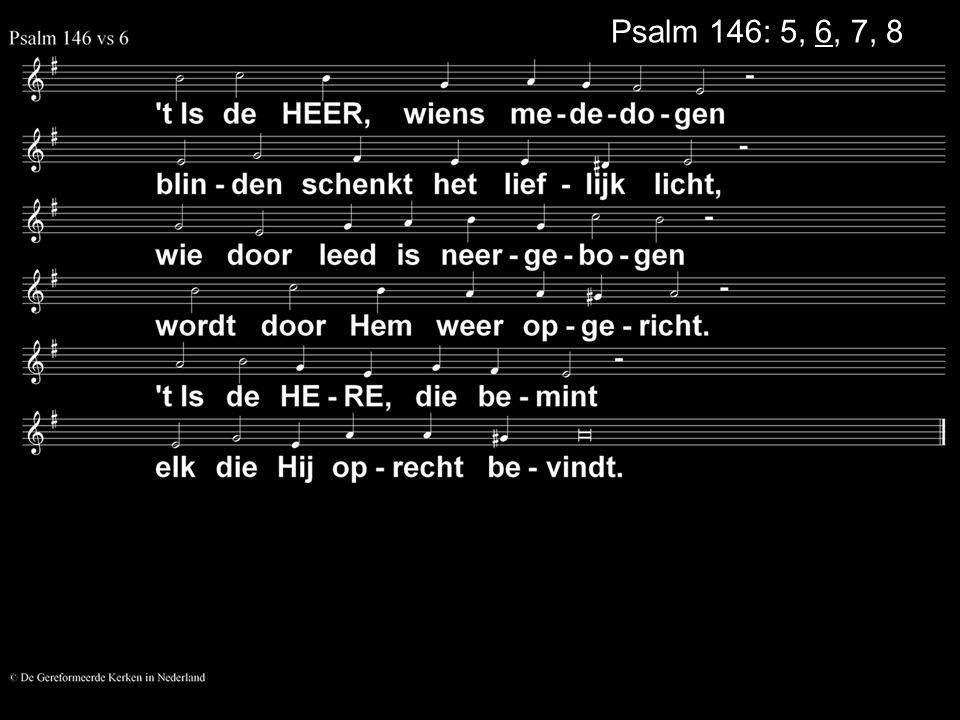 Psalm 146: 5, 6, 7, 8