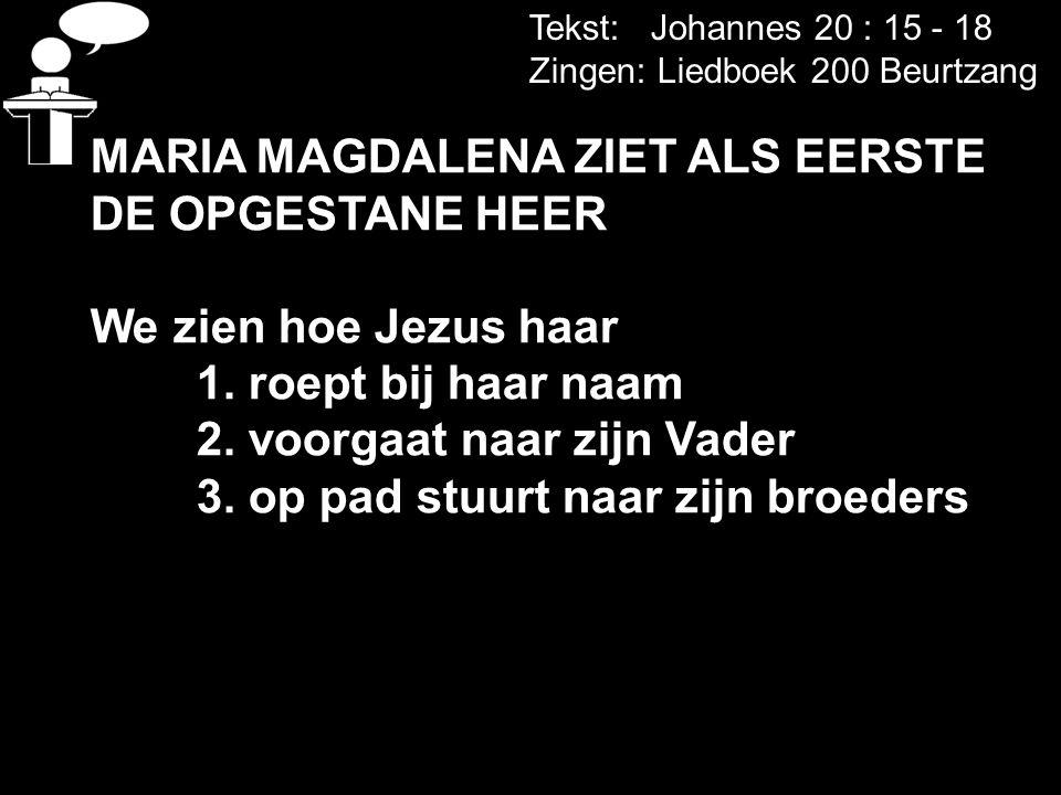 MARIA MAGDALENA ZIET ALS EERSTE DE OPGESTANE HEER