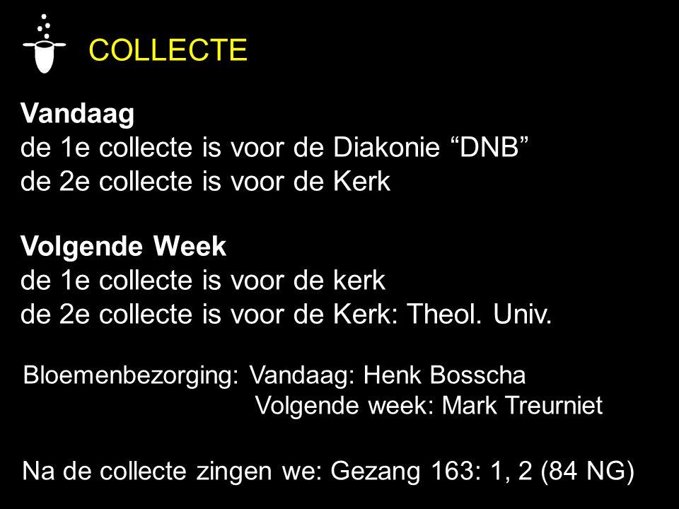 COLLECTE Vandaag de 1e collecte is voor de Diakonie DNB