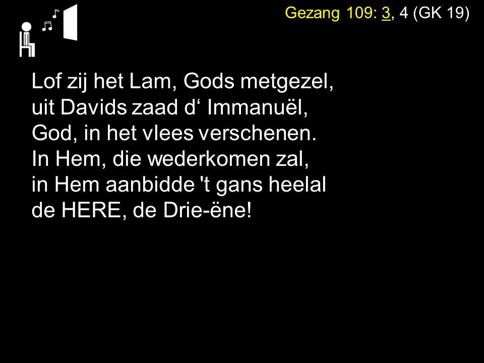 Lof zij het Lam, Gods metgezel, uit Davids zaad d' Immanuël,
