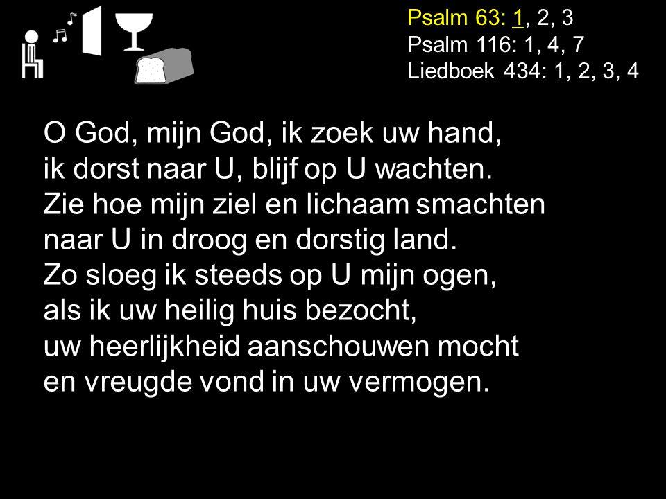 O God, mijn God, ik zoek uw hand, ik dorst naar U, blijf op U wachten.