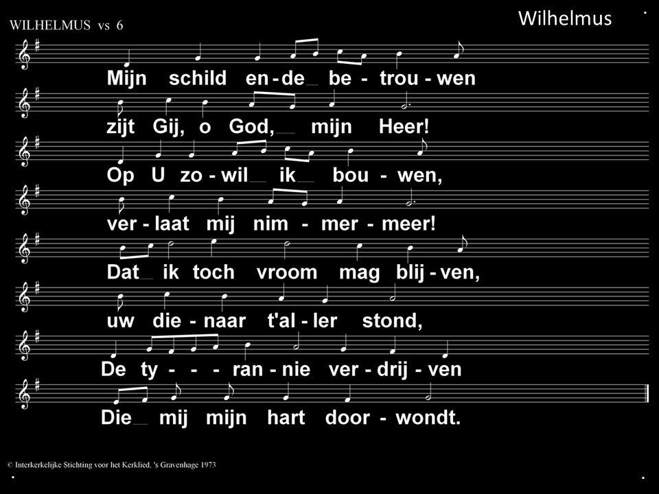 . Wilhelmus . .