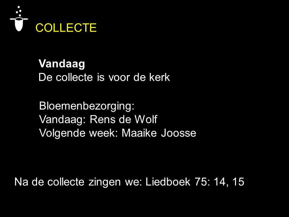 COLLECTE Vandaag De collecte is voor de kerk Bloemenbezorging: