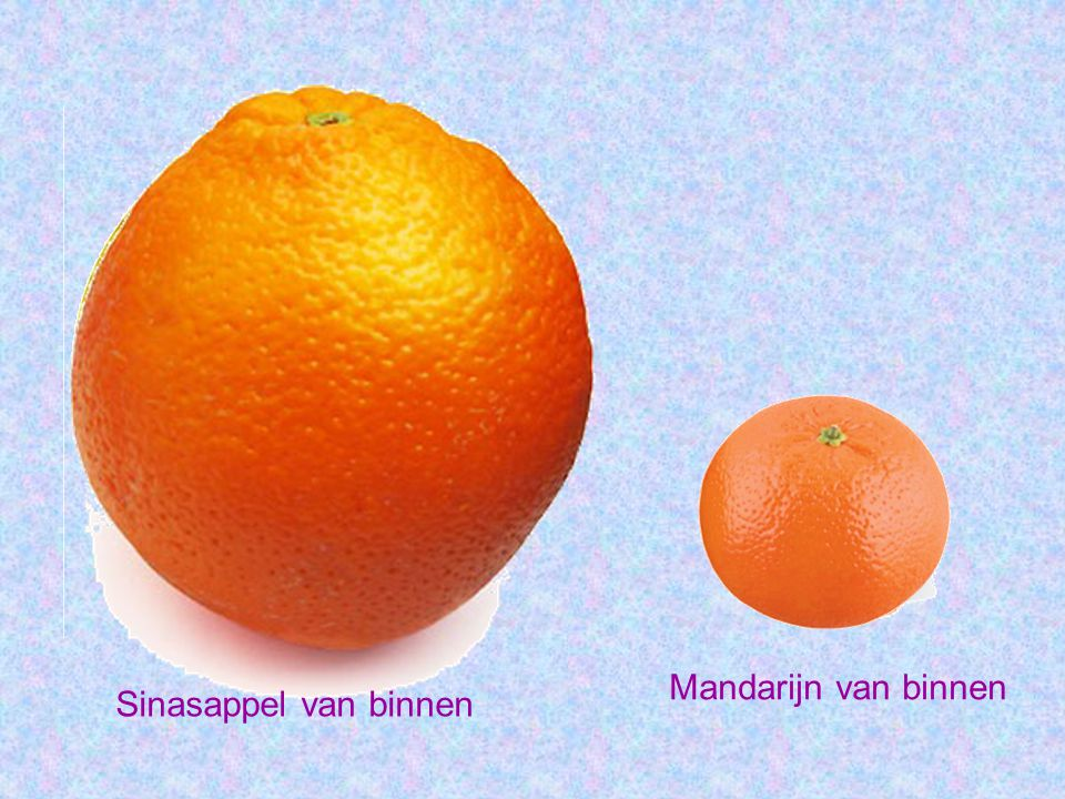 Mandarijn van binnen Sinasappel van binnen
