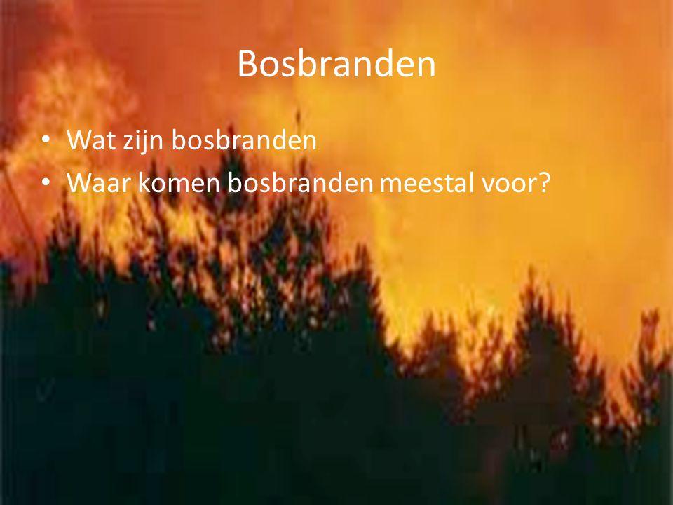 Bosbranden Wat zijn bosbranden Waar komen bosbranden meestal voor
