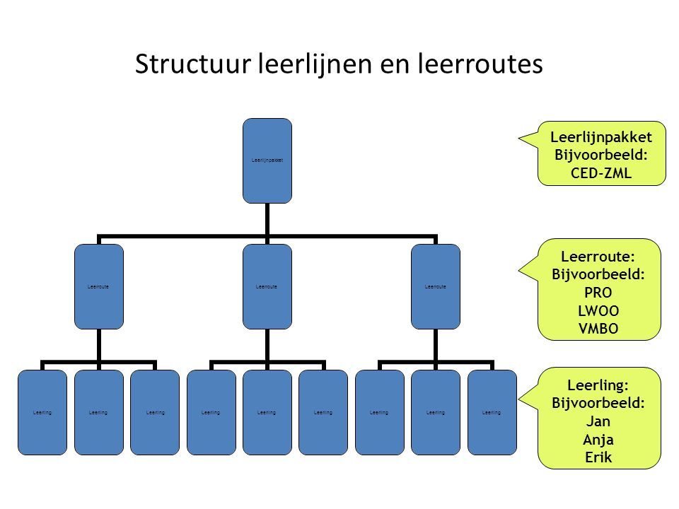 Structuur leerlijnen en leerroutes