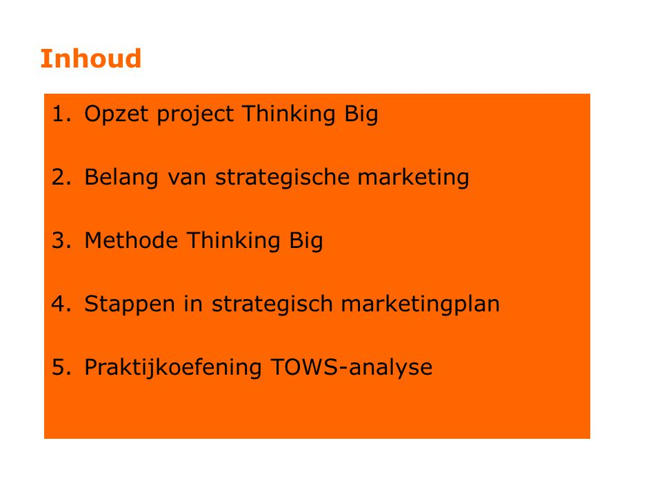 Inhoud Opzet project Thinking Big Belang van strategische marketing