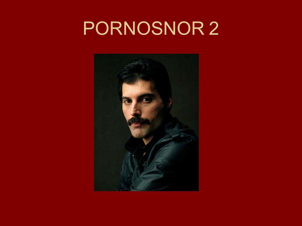 PORNOSNOR 2