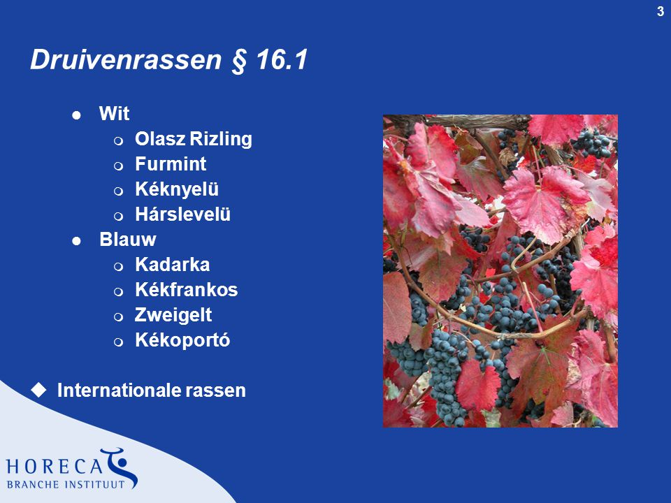 Druivenrassen § 16.1 Wit Olasz Rizling Furmint Kéknyelü Hárslevelü