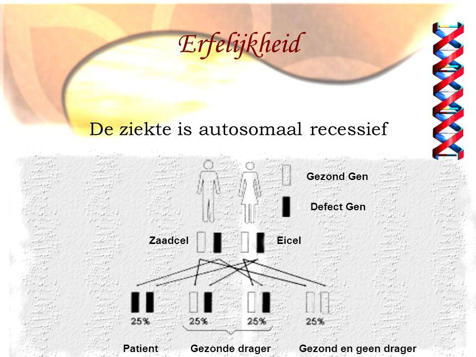 Erfelijkheid De ziekte is autosomaal recessief Gezond Gen Defect Gen
