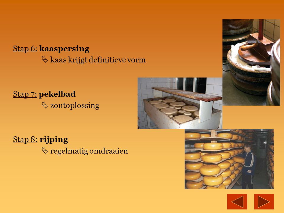 Stap 6: kaaspersing  kaas krijgt definitieve vorm. Stap 7: pekelbad.  zoutoplossing. Stap 8: rijping.