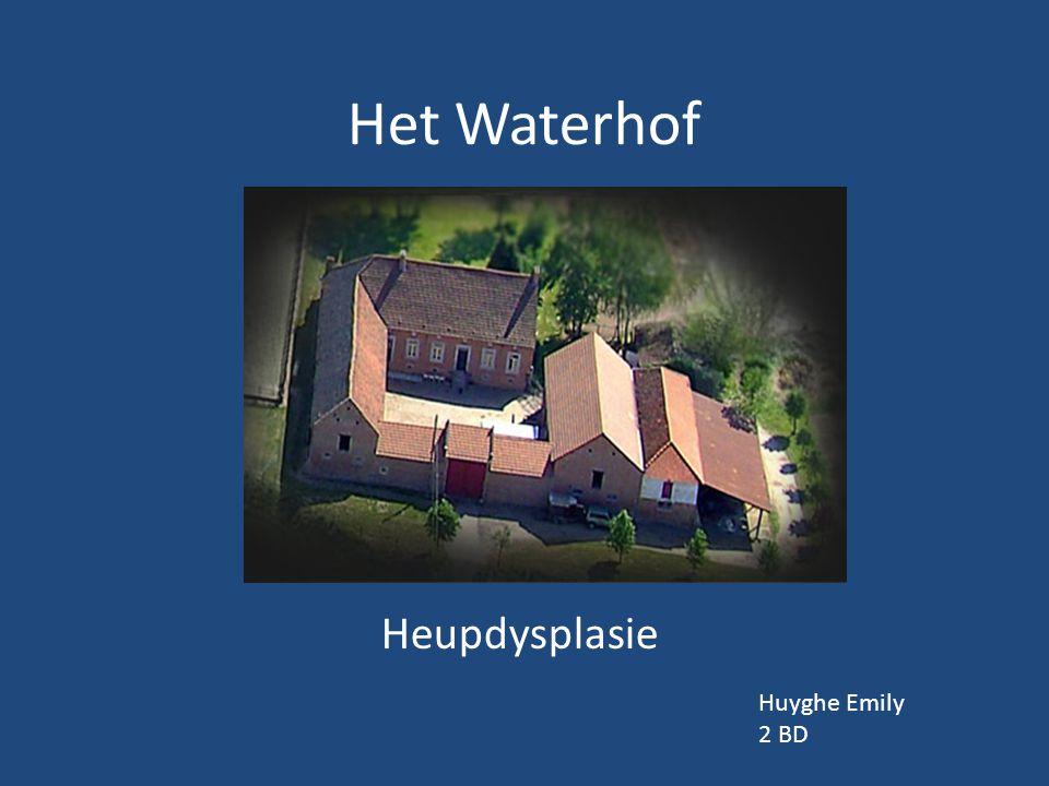Het Waterhof Heupdysplasie Huyghe Emily 2 BD