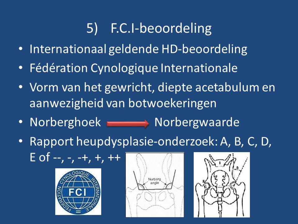 F.C.I-beoordeling Internationaal geldende HD-beoordeling