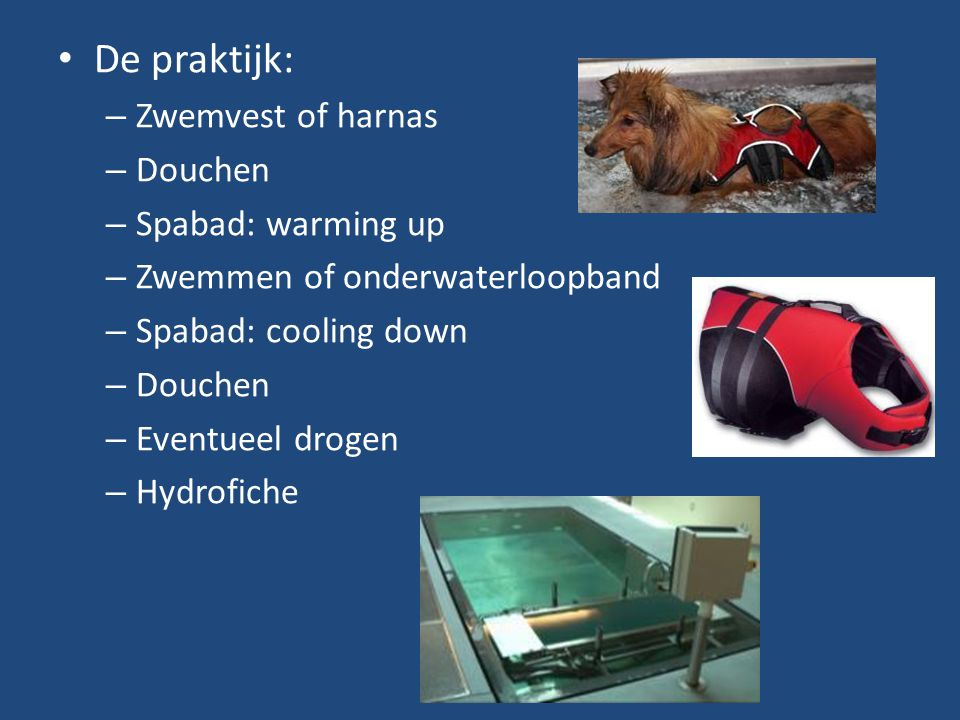 De praktijk: Zwemvest of harnas Douchen Spabad: warming up