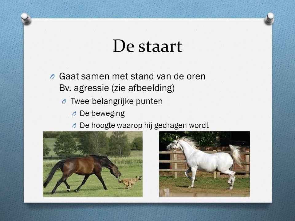 De staart Gaat samen met stand van de oren Bv. agressie (zie afbeelding) Twee belangrijke punten. De beweging.