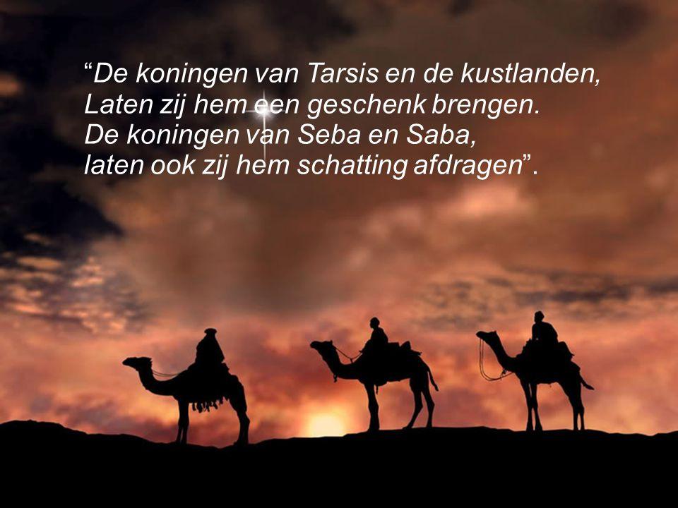 De koningen van Tarsis en de kustlanden,