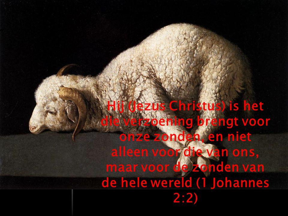 Hij (Jezus Christus) is het die verzoening brengt voor onze zonden, en niet alleen voor die van ons, maar voor de zonden van de hele wereld (1 Johannes 2:2)