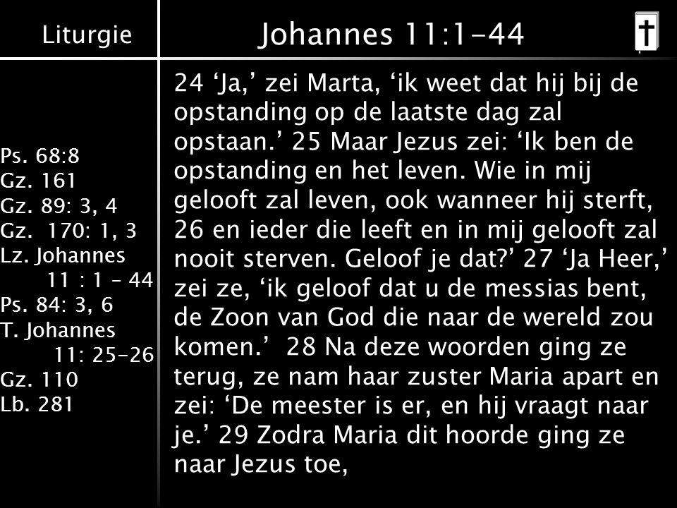 Johannes 11:1-44