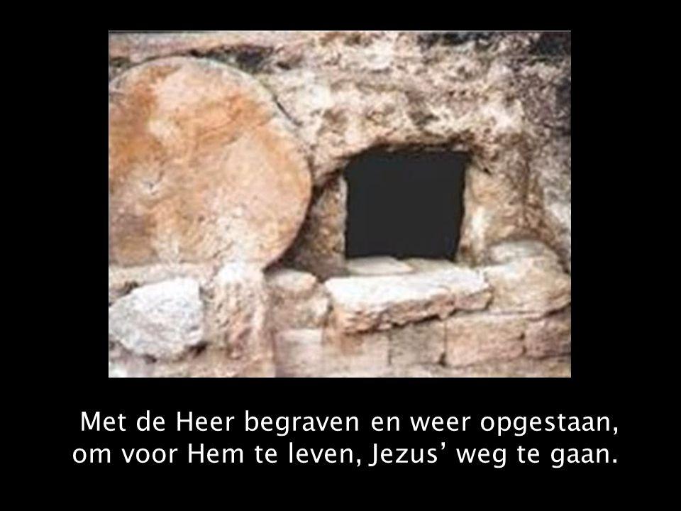 Met de Heer begraven en weer opgestaan, om voor Hem te leven, Jezus' weg te gaan.