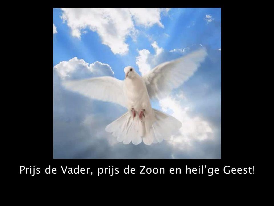 Prijs de Vader, prijs de Zoon en heil'ge Geest!