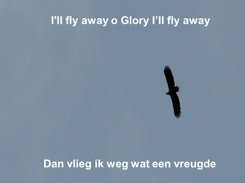 I ll fly away o Glory I'll fly away