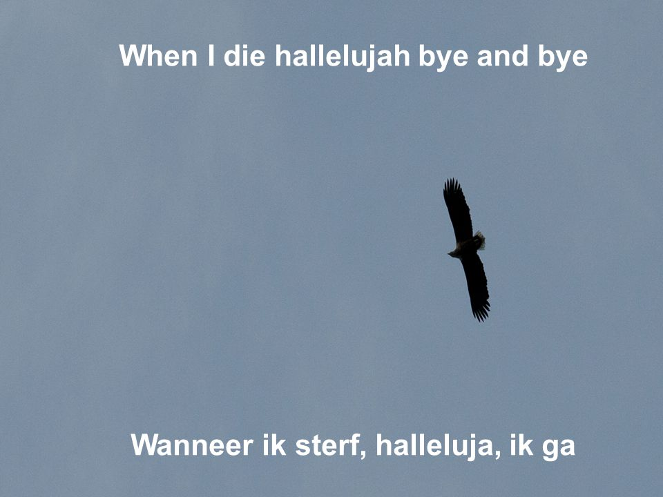 When I die hallelujah bye and bye Wanneer ik sterf, halleluja, ik ga
