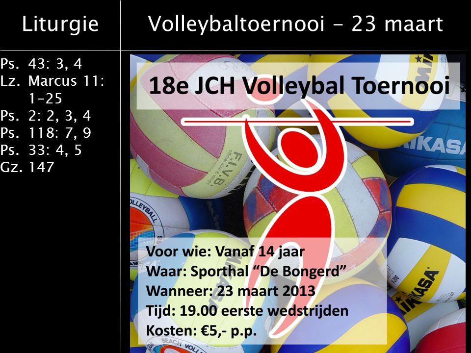 Volleybaltoernooi - 23 maart