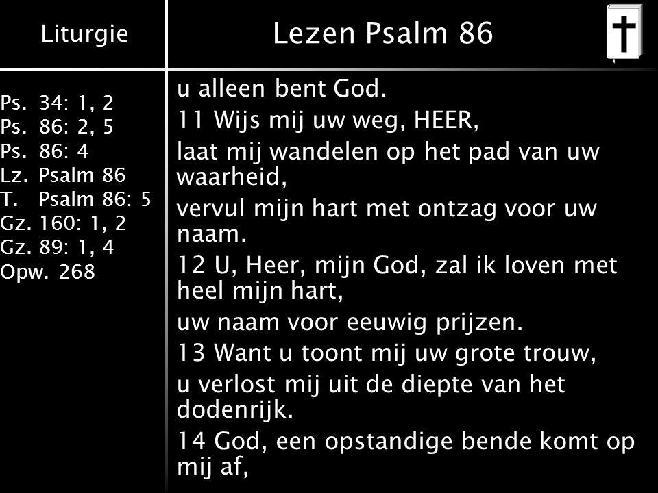 Lezen Psalm 86 u alleen bent God. 11 Wijs mij uw weg, HEER,