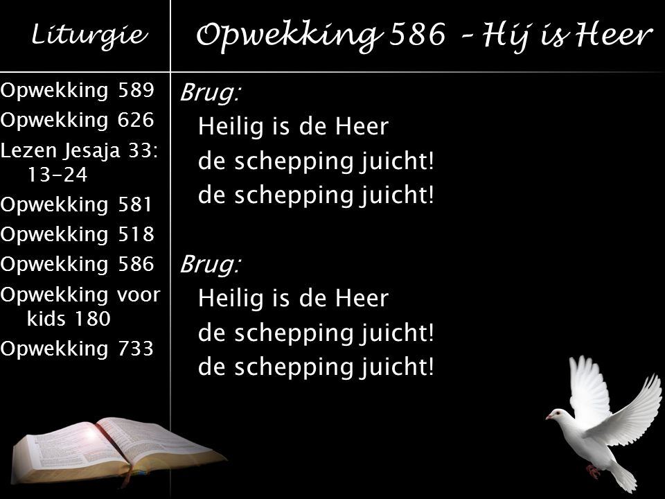 Opwekking 586 – Hij is Heer Brug: Heilig is de Heer de schepping juicht!